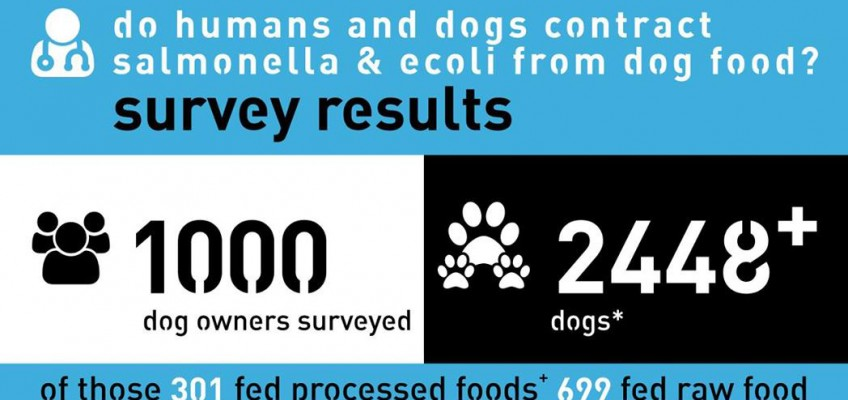 Can you get Salmonella & E.coli from raw dog food?
