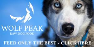 Wolf Peak