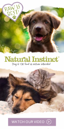 Watch the Natural Instinct video